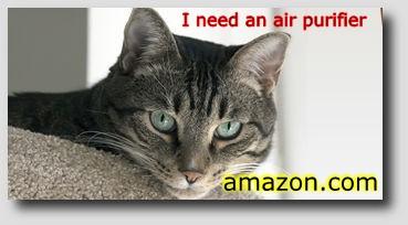 Cat ad